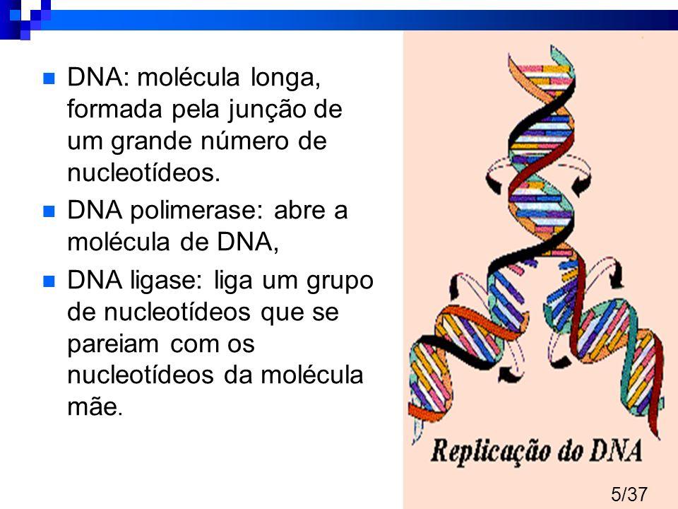 Fisiopatologia CA - DNA