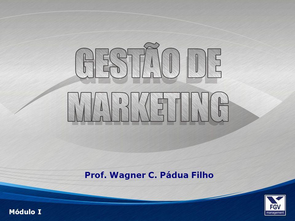 Prof. Wagner C. Pádua Filho