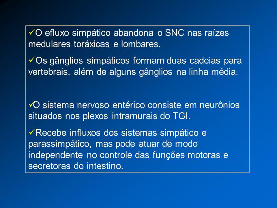 O efluxo simpático abandona o SNC nas raízes medulares toráxicas e lombares.