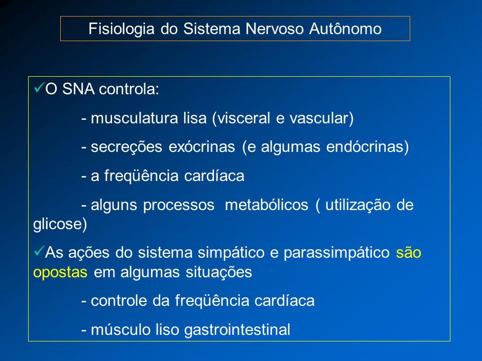 Fisiologia do Sistema Nervoso Autônomo