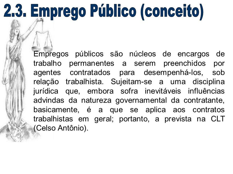 2.3. Emprego Público (conceito)