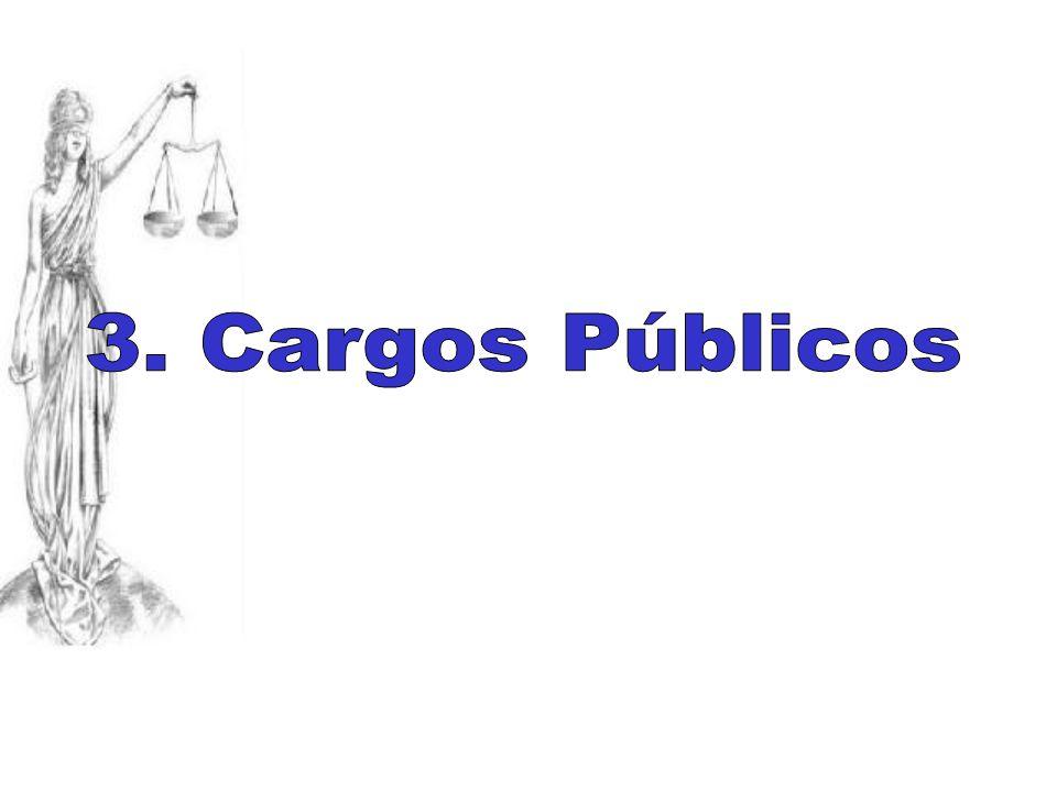 3. Cargos Públicos