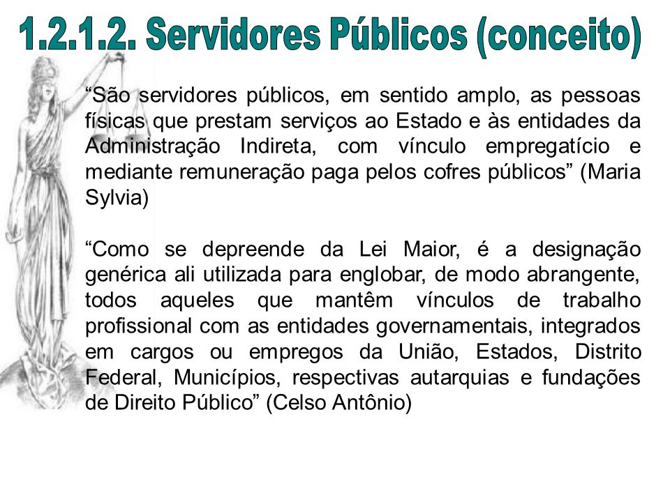 1.2.1.2. Servidores Públicos (conceito)