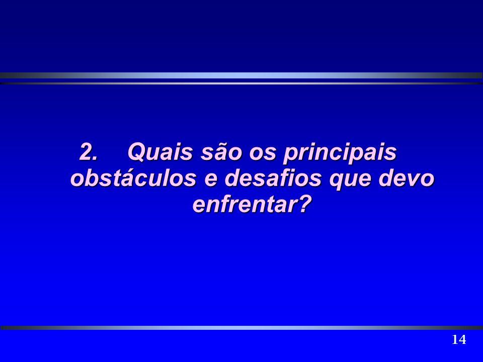 2. Quais são os principais obstáculos e desafios que devo enfrentar