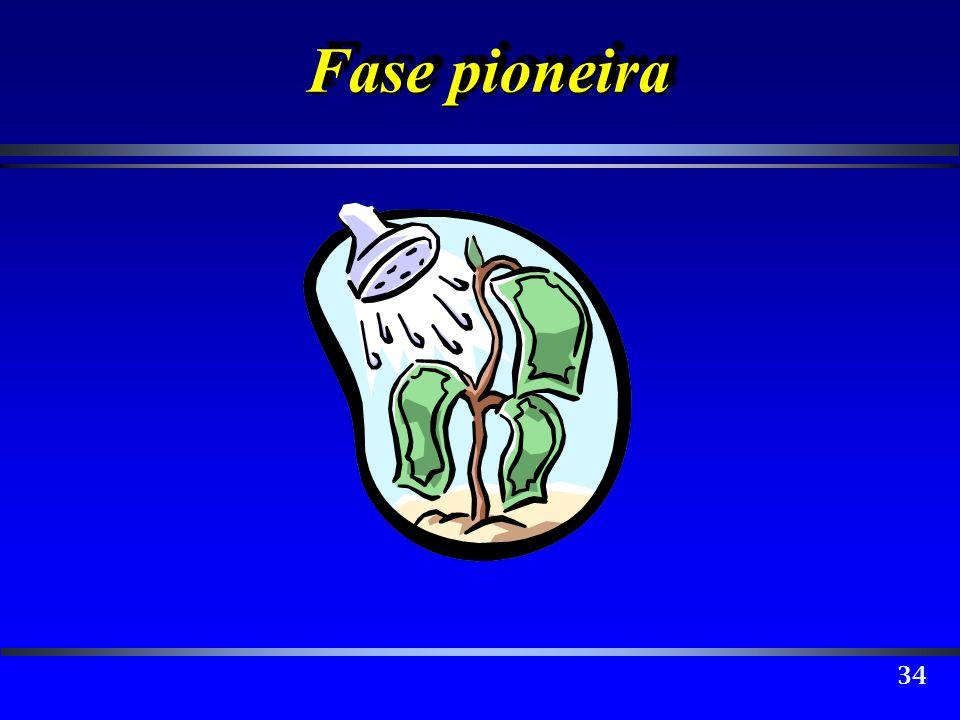 Fase pioneira