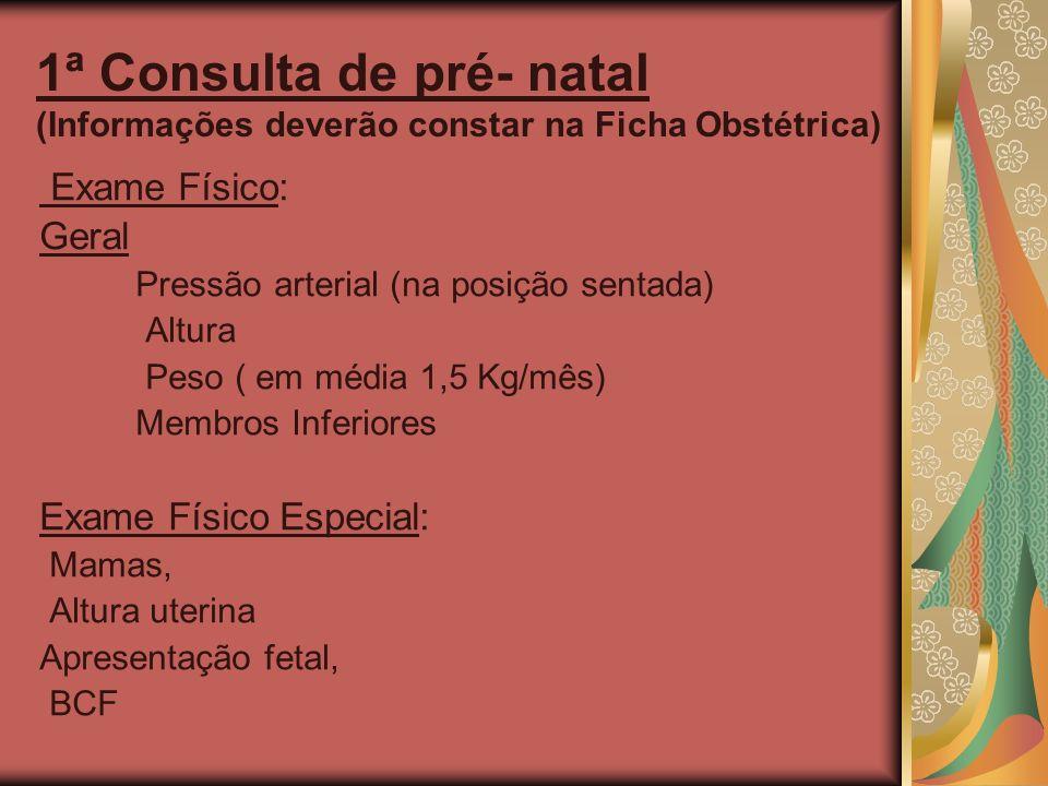 1ª Consulta de pré- natal (Informações deverão constar na Ficha Obstétrica)