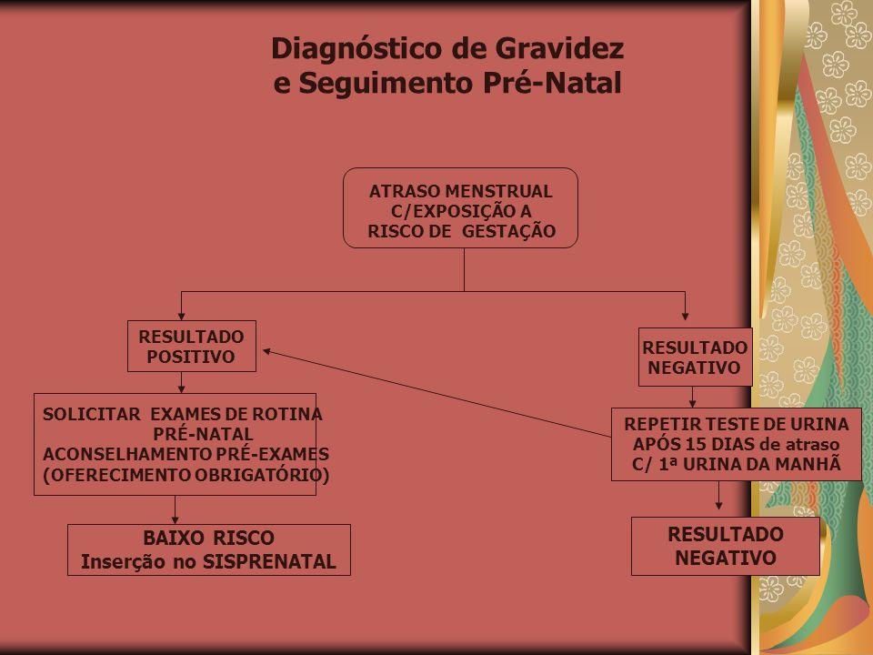 Diagnóstico de Gravidez e Seguimento Pré-Natal