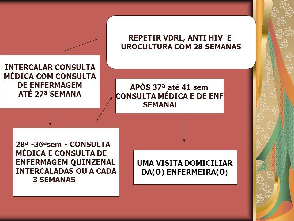 UROCULTURA COM 28 SEMANAS CONSULTA MÉDICA E DE ENF