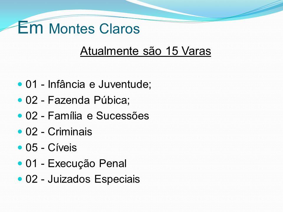 Em Montes Claros Atualmente são 15 Varas 01 - Infância e Juventude;
