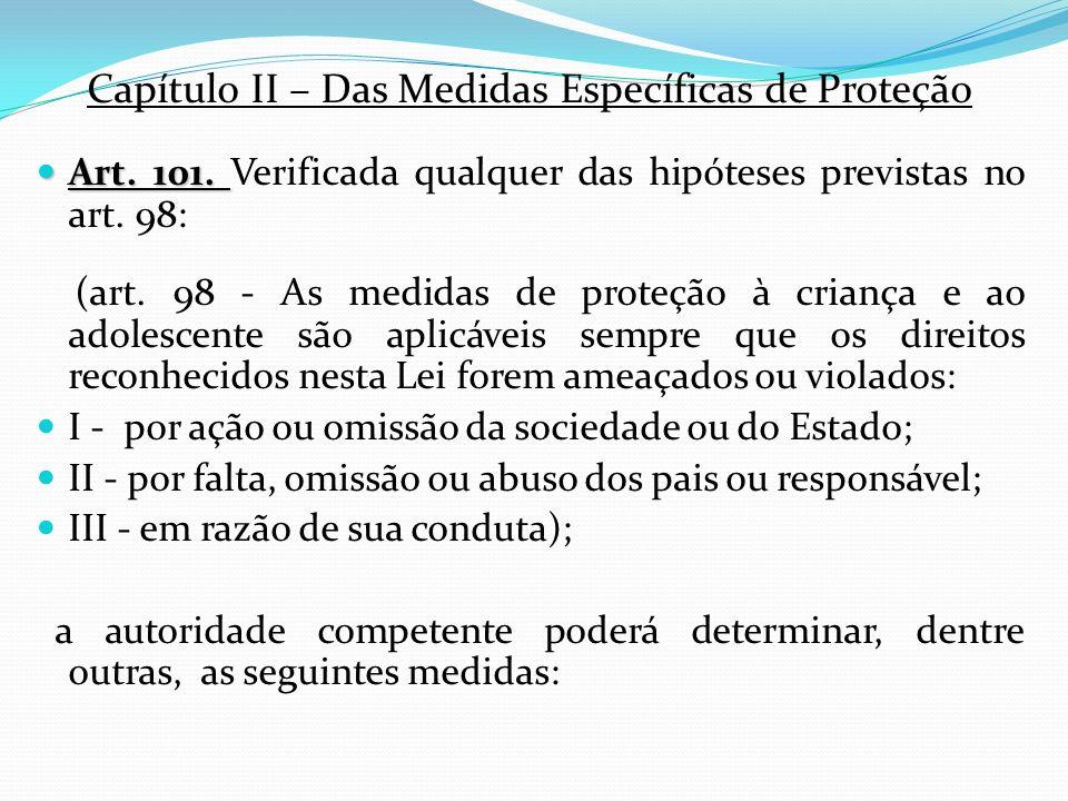 Capítulo II – Das Medidas Específicas de Proteção