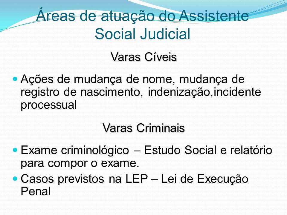 Áreas de atuação do Assistente Social Judicial