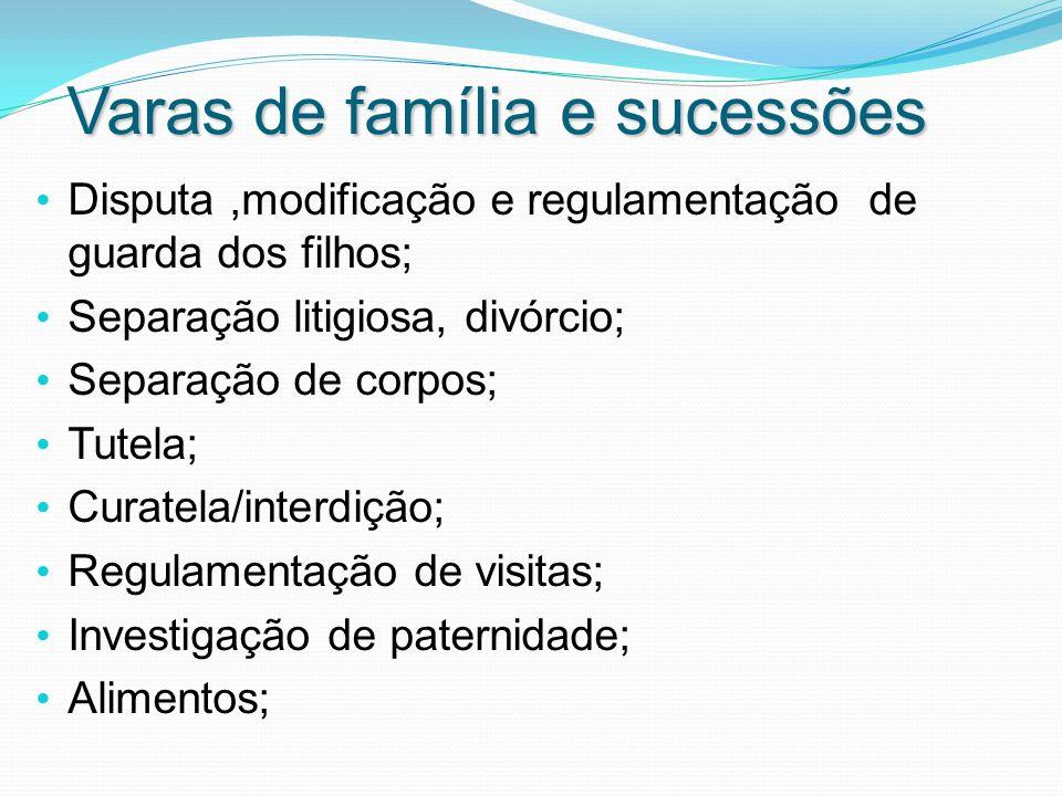 Varas de família e sucessões
