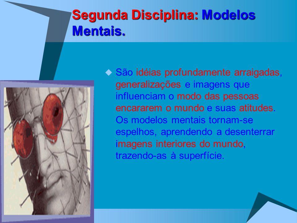 Segunda Disciplina: Modelos Mentais.
