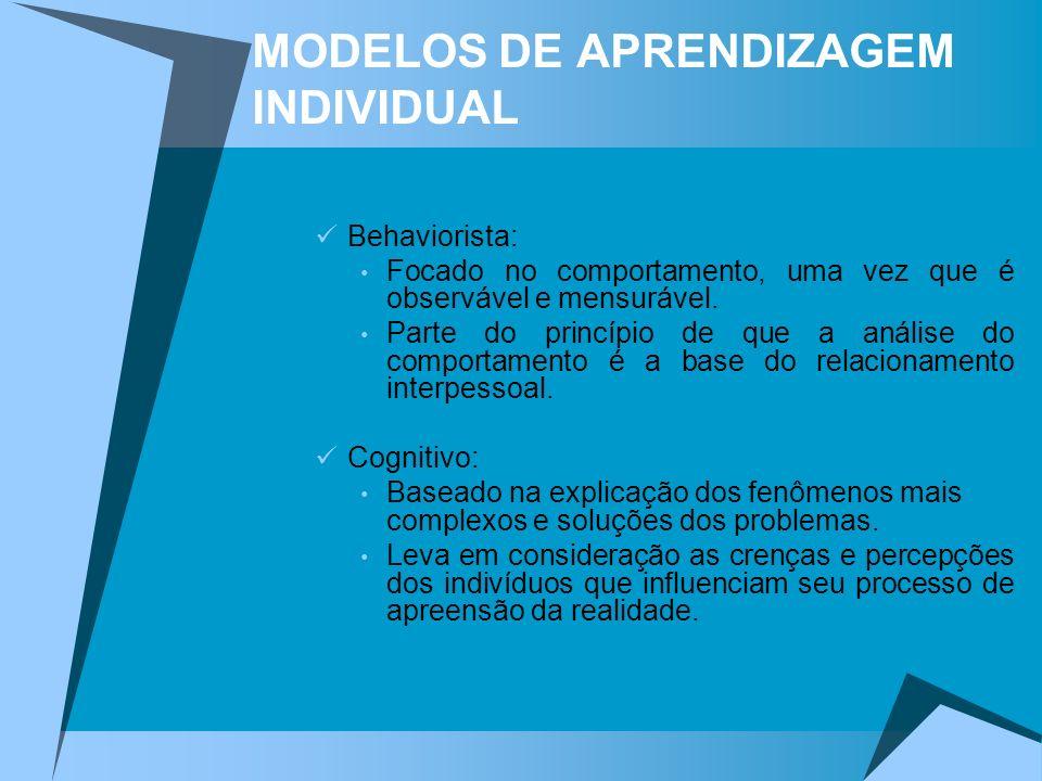 MODELOS DE APRENDIZAGEM INDIVIDUAL