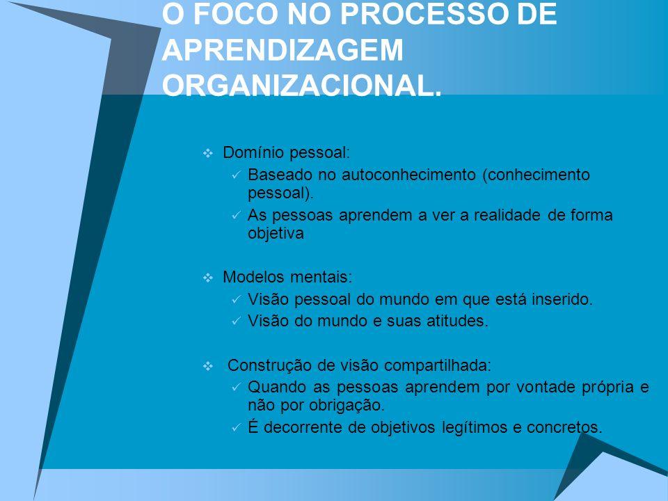 O FOCO NO PROCESSO DE APRENDIZAGEM ORGANIZACIONAL.
