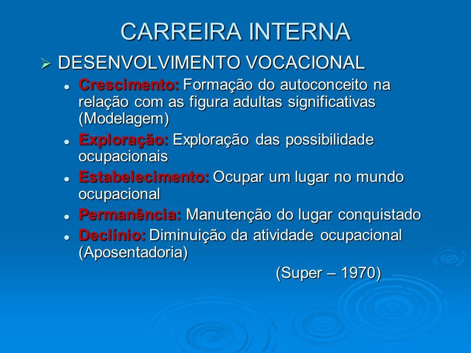 CARREIRA INTERNA DESENVOLVIMENTO VOCACIONAL
