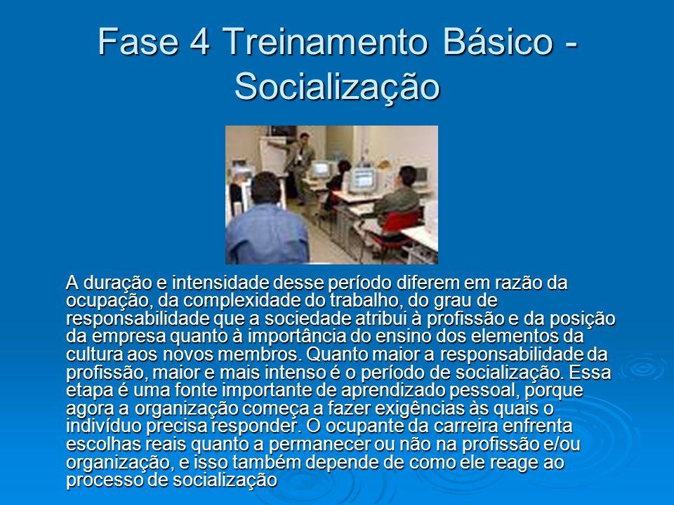 Fase 4 Treinamento Básico - Socialização