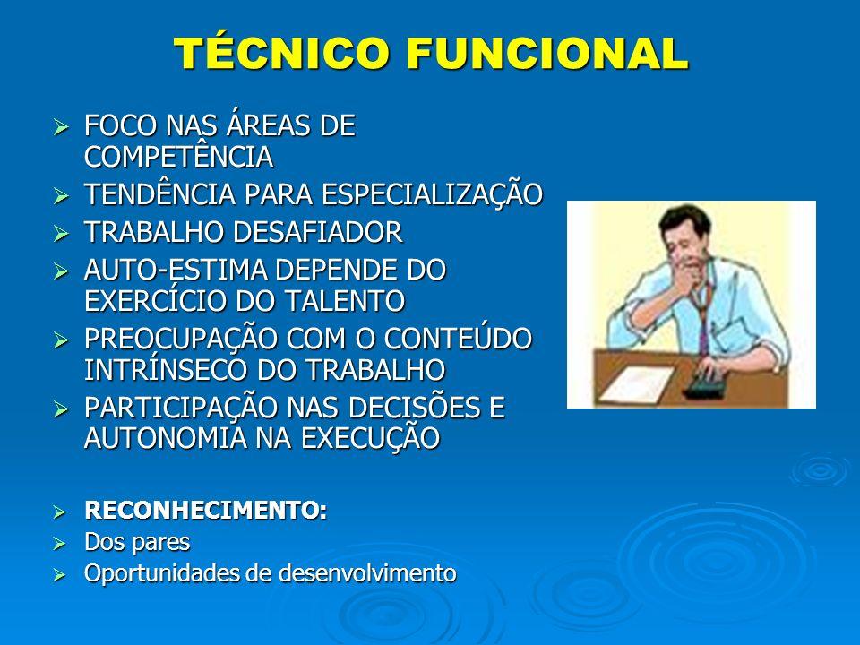 TÉCNICO FUNCIONAL FOCO NAS ÁREAS DE COMPETÊNCIA