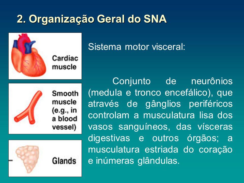 2. Organização Geral do SNA