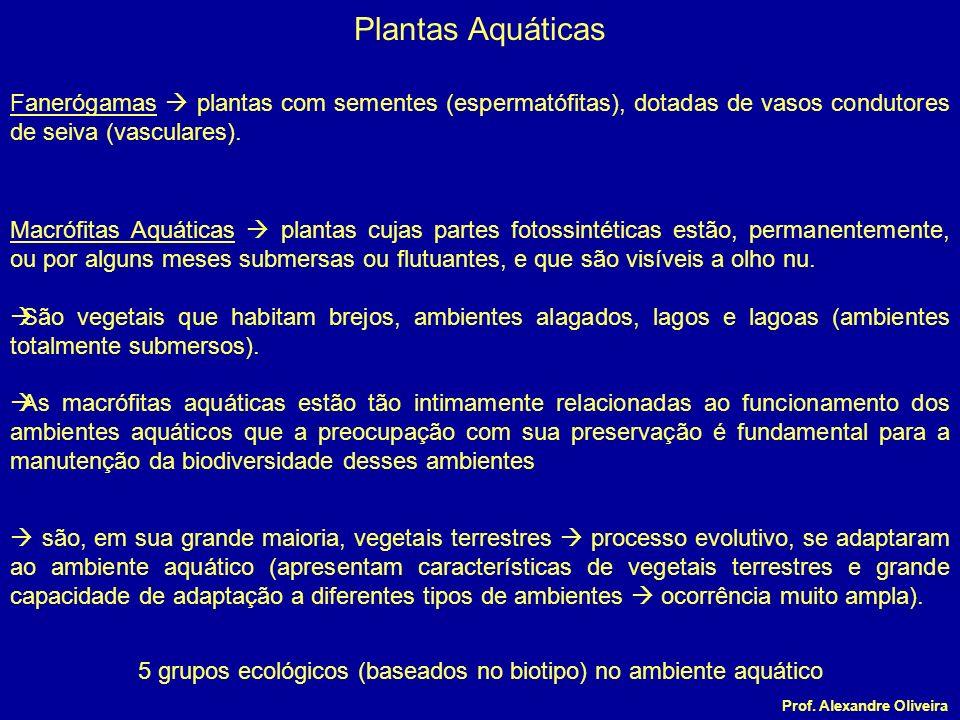 5 grupos ecológicos (baseados no biotipo) no ambiente aquático