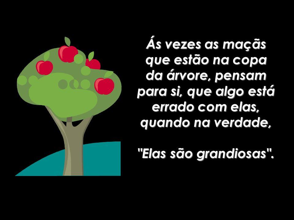 Ás vezes as maçãs que estão na copa da árvore, pensam para si, que algo está errado com elas, quando na verdade,
