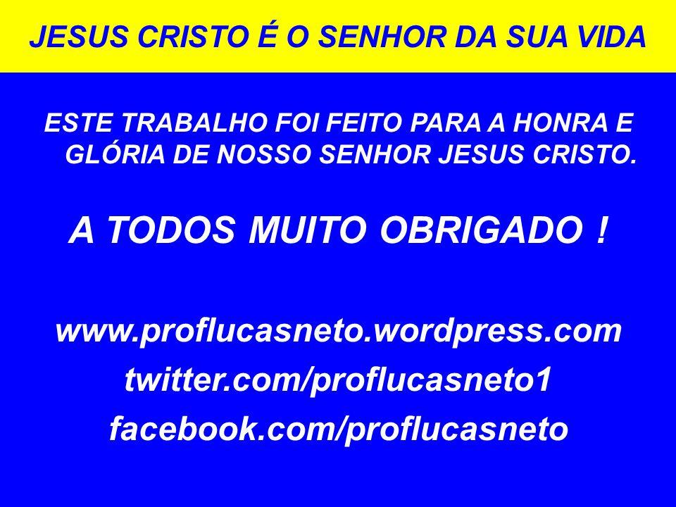 A TODOS MUITO OBRIGADO ! www.proflucasneto.wordpress.com