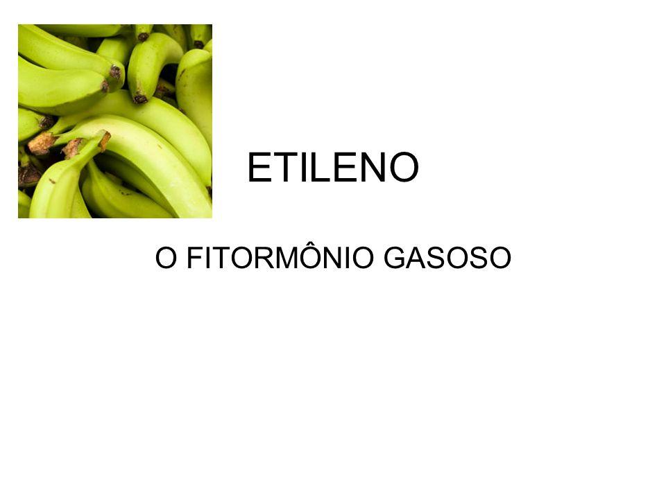 ETILENO O FITORMÔNIO GASOSO