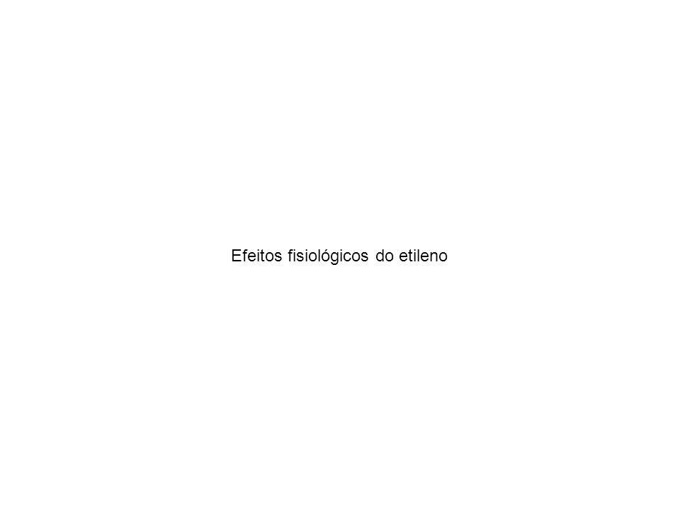Efeitos fisiológicos do etileno