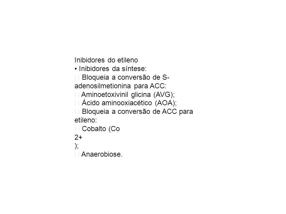 Inibidores do etileno • Inibidores da síntese:  Bloqueia a conversão de S-adenosilmetionina para ACC: