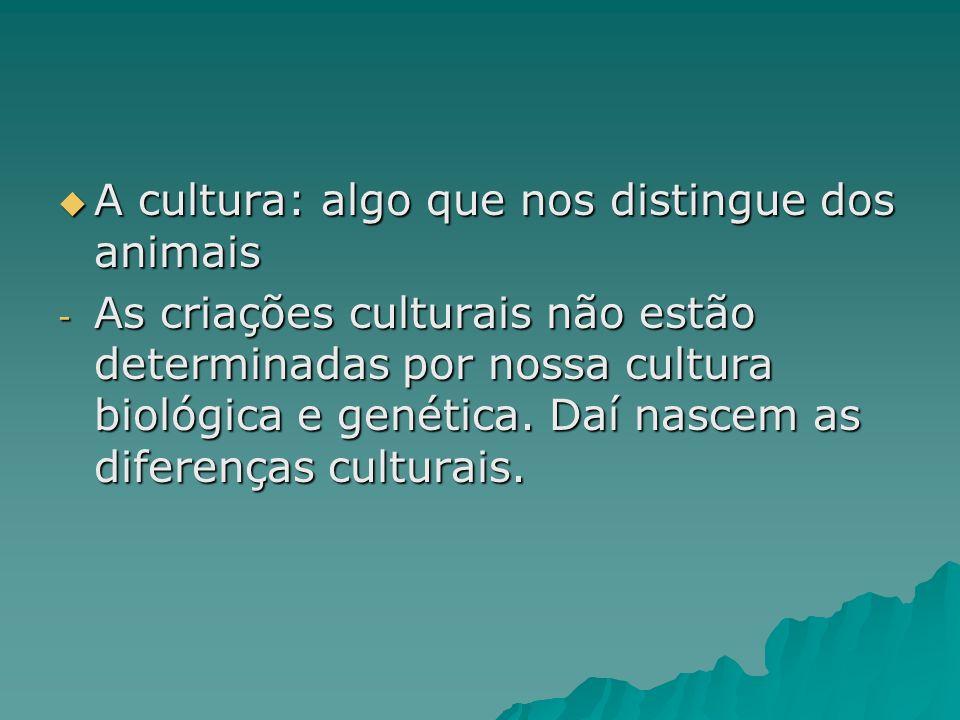 A cultura: algo que nos distingue dos animais