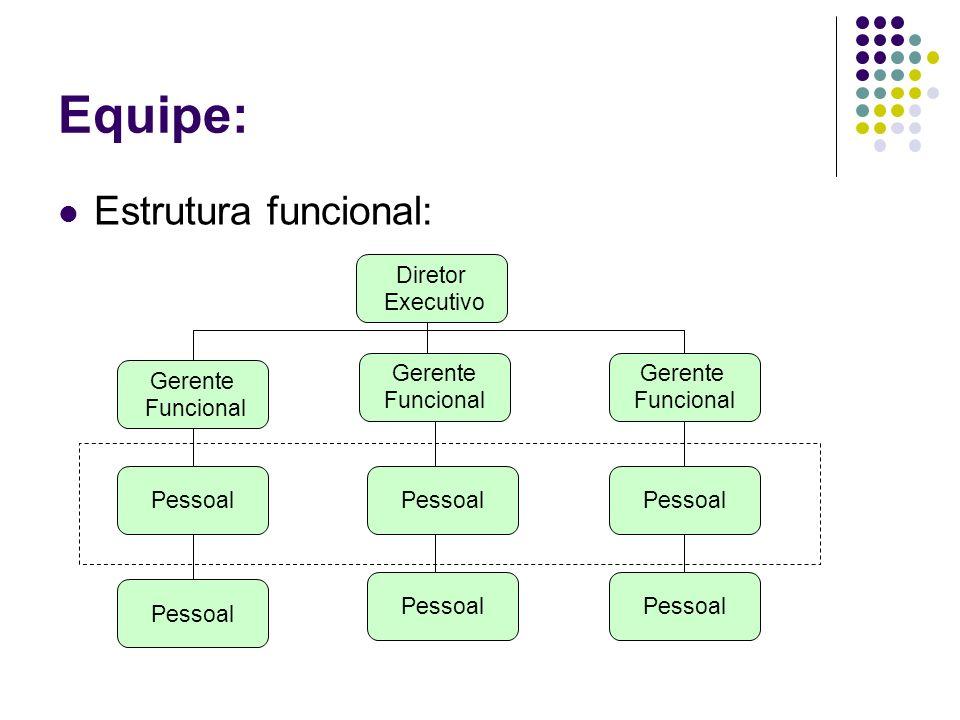 Equipe: Estrutura funcional: Diretor Executivo Gerente Funcional