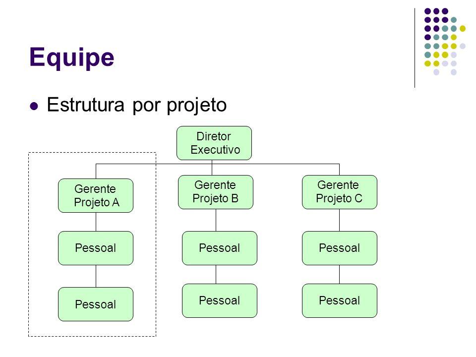 Equipe Estrutura por projeto Diretor Executivo Gerente Projeto C