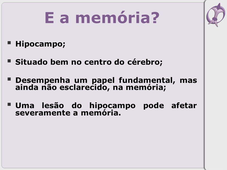 E a memória Hipocampo; Situado bem no centro do cérebro;
