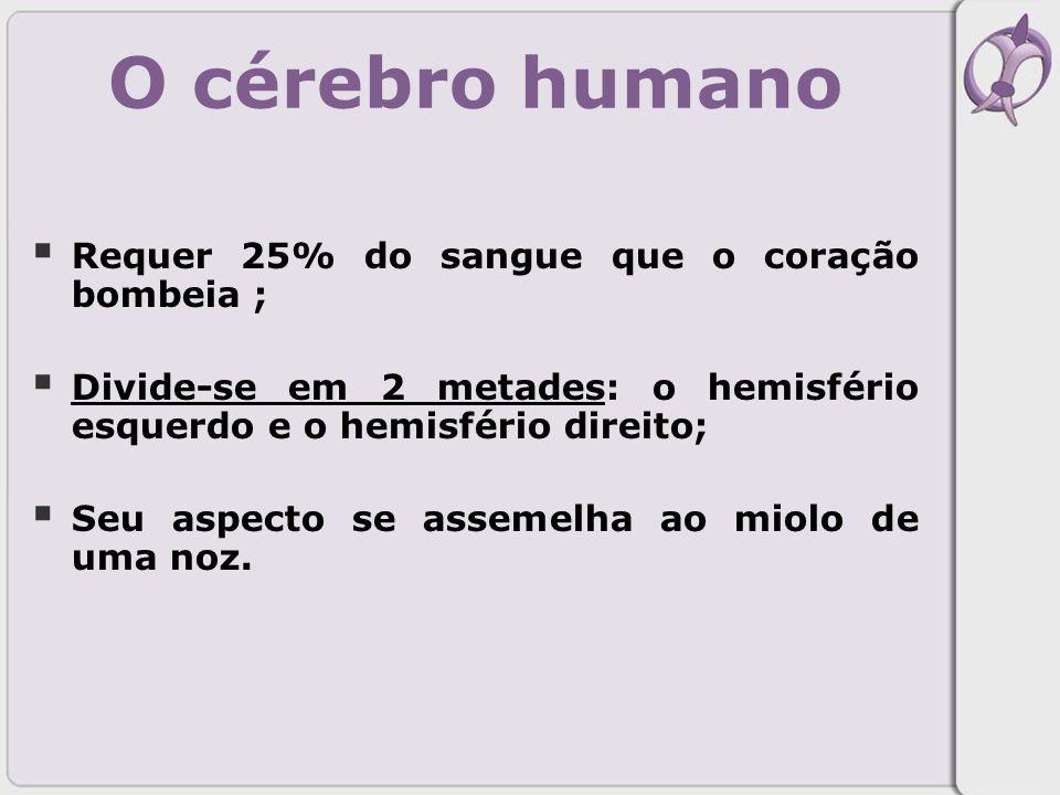 O cérebro humano Requer 25% do sangue que o coração bombeia ;