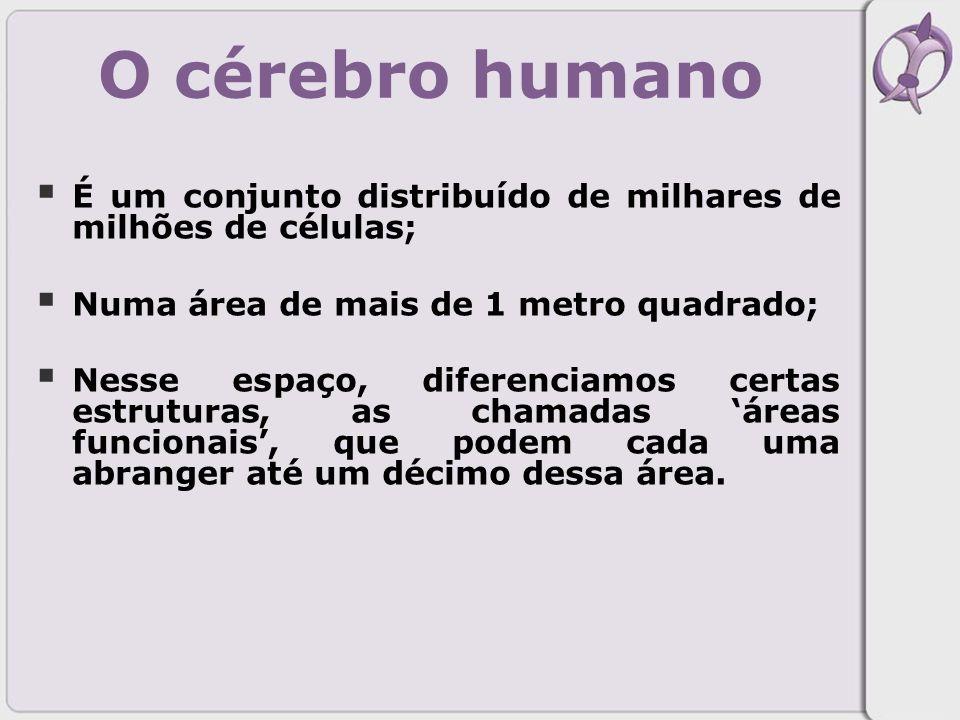 O cérebro humano É um conjunto distribuído de milhares de milhões de células; Numa área de mais de 1 metro quadrado;