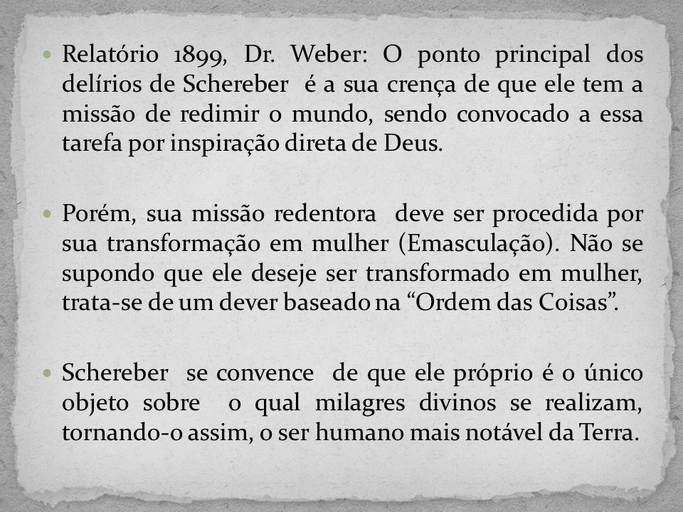 Relatório 1899, Dr. Weber: O ponto principal dos delírios de Schereber é a sua crença de que ele tem a missão de redimir o mundo, sendo convocado a essa tarefa por inspiração direta de Deus.
