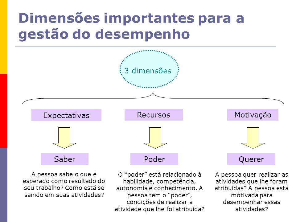 Dimensões importantes para a gestão do desempenho