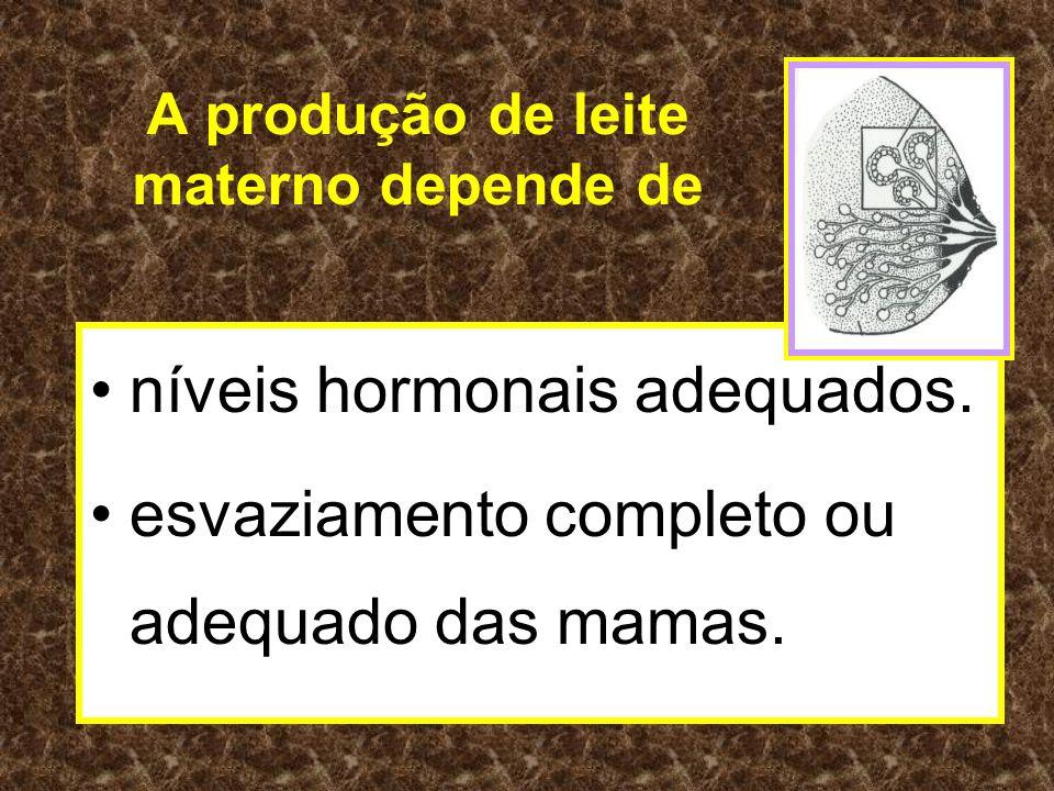 A produção de leite materno depende de