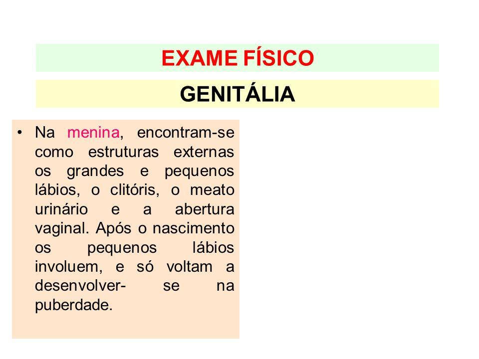 EXAME FÍSICO GENITÁLIA