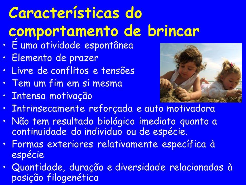 Características do comportamento de brincar