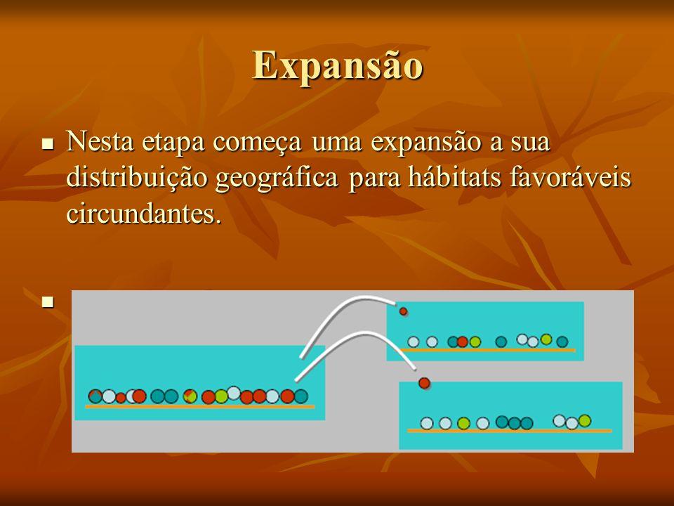 Expansão Nesta etapa começa uma expansão a sua distribuição geográfica para hábitats favoráveis circundantes.