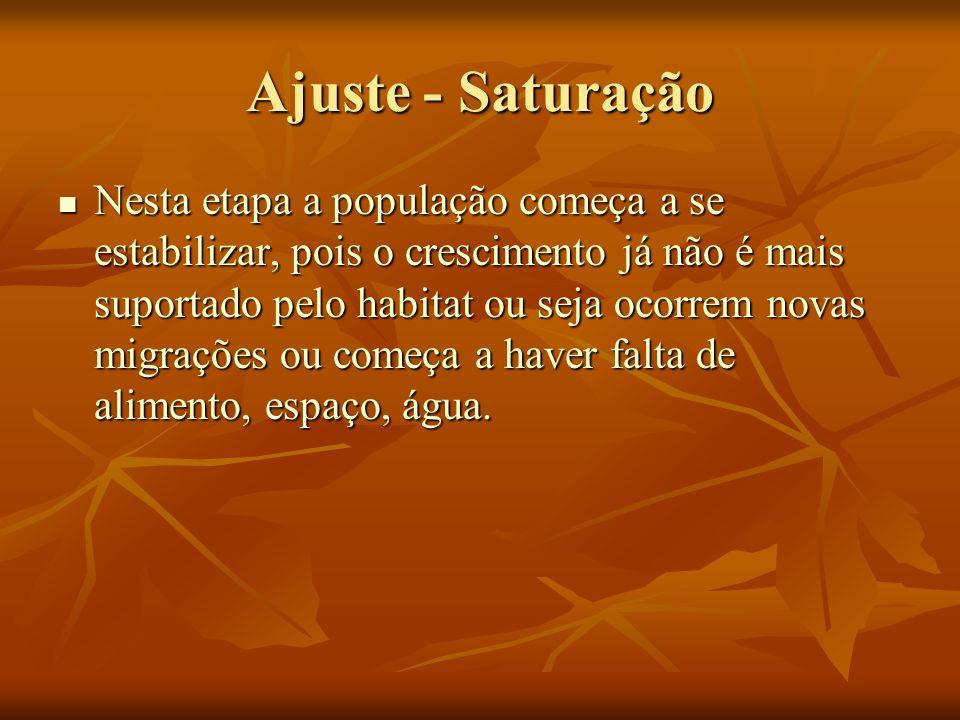 Ajuste - Saturação