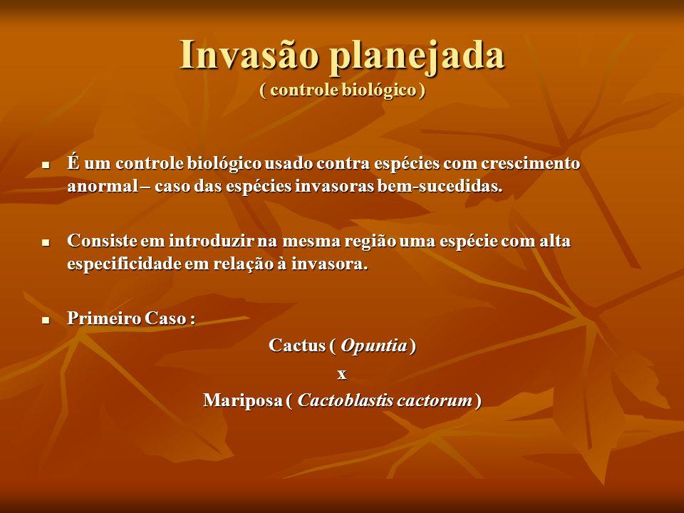 Invasão planejada ( controle biológico )