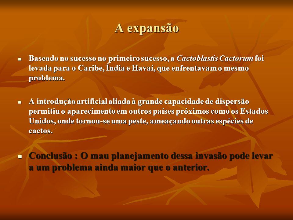 A expansãoBaseado no sucesso no primeiro sucesso, a Cactoblastis Cactorum foi levada para o Caribe, Índia e Havaí, que enfrentavam o mesmo problema.