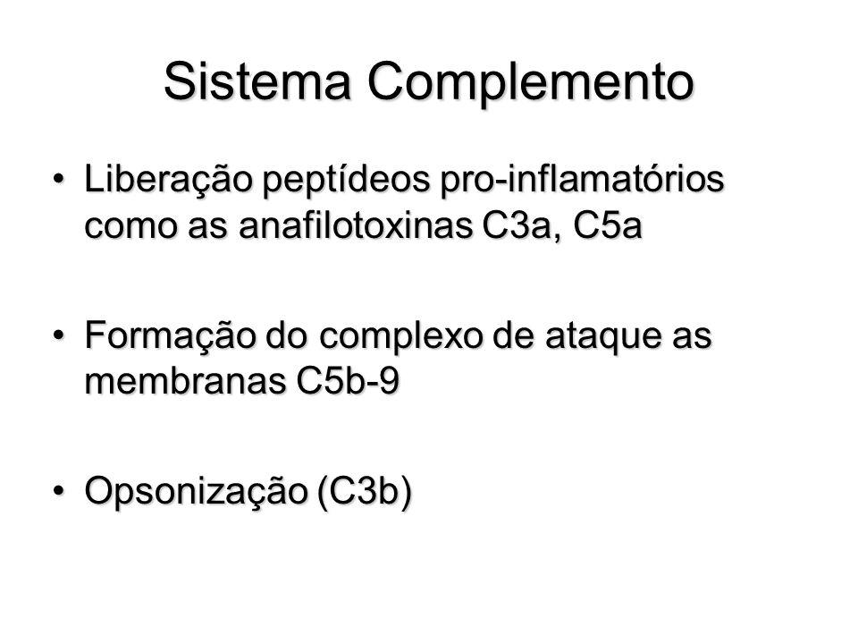 Sistema Complemento Liberação peptídeos pro-inflamatórios como as anafilotoxinas C3a, C5a. Formação do complexo de ataque as membranas C5b-9.