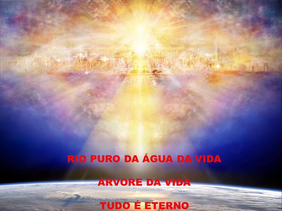 RIO PURO DA ÁGUA DA VIDA ÁRVORE DA VIDA TUDO É ETERNO