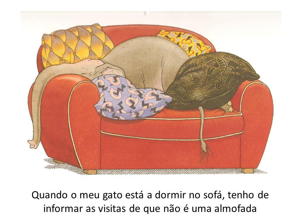 Quando o meu gato está a dormir no sofá, tenho de informar as visitas de que não é uma almofada