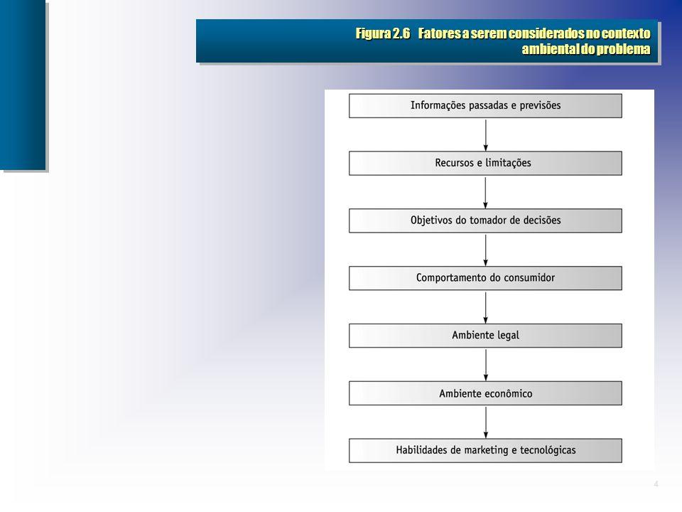 Figura 2.6 Fatores a serem considerados no contexto ambiental do problema