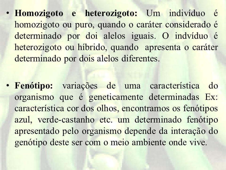 Homozigoto e heterozigoto: Um indivíduo é homozigoto ou puro, quando o caráter considerado é determinado por doi alelos iguais. O indvíduo é heterozigoto ou híbrido, quando apresenta o caráter determinado por dois alelos diferentes.