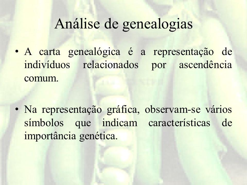 Análise de genealogias